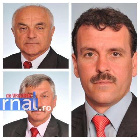 consiliul-national-psd-alesi