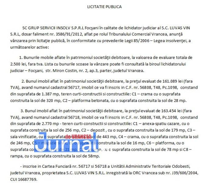 LICITATIE-PUBLICA2
