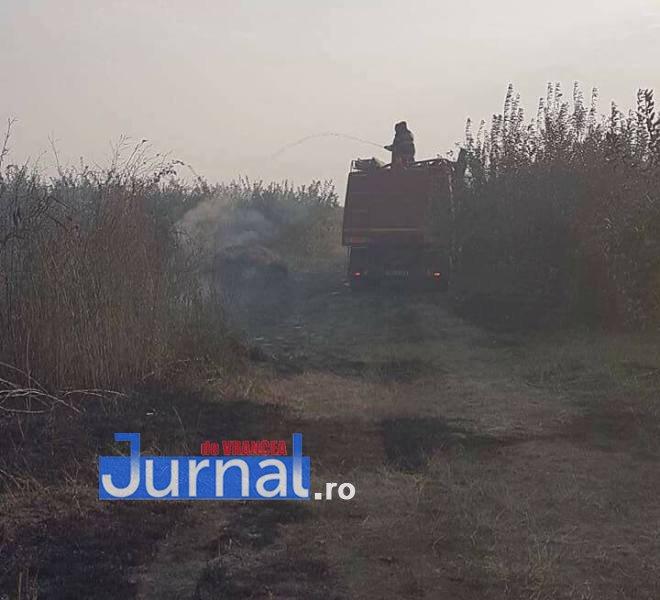 livada biliesti5 - Mobilizare la Biliești, unde livada a fost la un pas să fie mistuită de flăcări