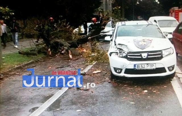 copac rupt focsani2 - ULTIMĂ ORĂ: Mașină distrusă de un copac rupt, în Focșani