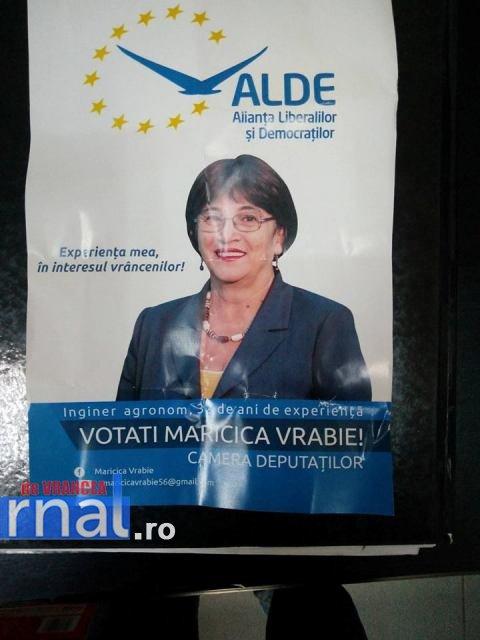 maricica-vrabie-banner-campanie-electorala2