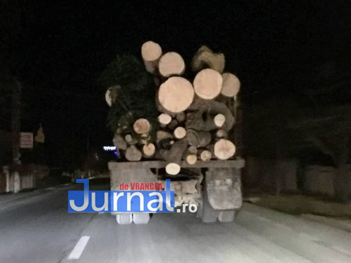 transport-lemne-ilegal-vrancea-bolotesti