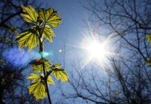 soare 218x150 - Jurnal de Vrancea