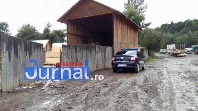 perchezitii taieri de paduri7 - GALERIE FOTO: Ce spune un fost primar care a închis ochii la tăierile de păduri despre percheziții