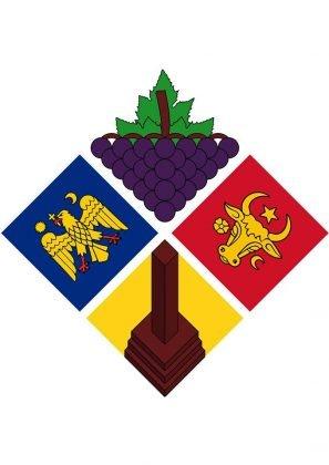 logo focsani13 297x420 - GALERIE FOTO: START VOT pentru desemnarea unui logo al Focșaniului