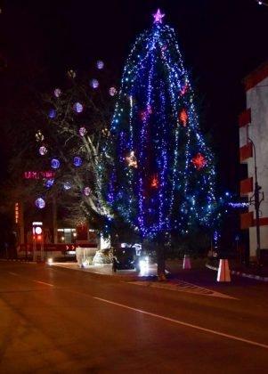 Iluminat sarbatori 4 301x420 - FOTO: Primăria Orașului Panciu a aprins luminile din bradul de Crăciun