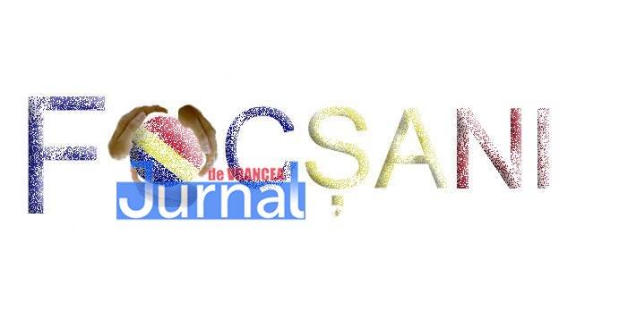 logo focsani7 - FOTO: Concursul pentru un LOGO pentru Focșani, în etapa jurizării. E nevoie de votul focșănenilor!