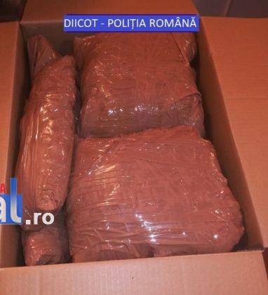 canabis-droguri-diicot-vrancea3