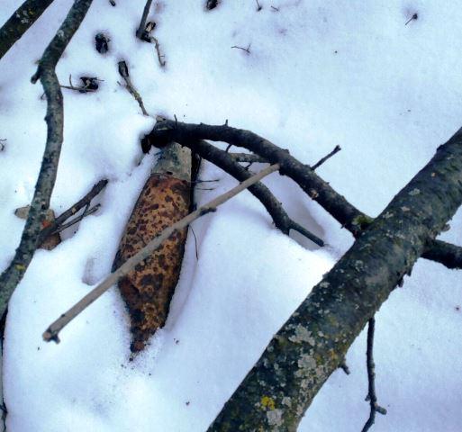 proiectile voetin 2 - FOTO: Patru proiectile explozive descoperite în pădure