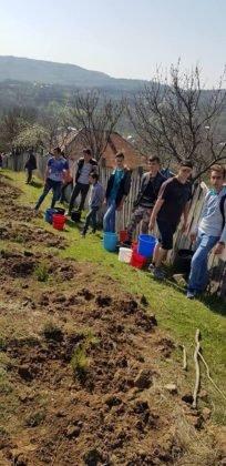 dumitresti plantare de puieti2 204x420 - FOTO: Plantări de primăvară la Dumitrești. O pădure de molizi se va ridica lângă Monumentul Eroilor