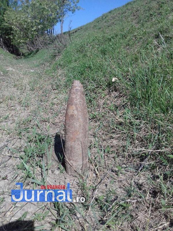 bombe garoafa1 - FOTO: Mii de cartuşe de infanterie, descoperite la Fitioneşti