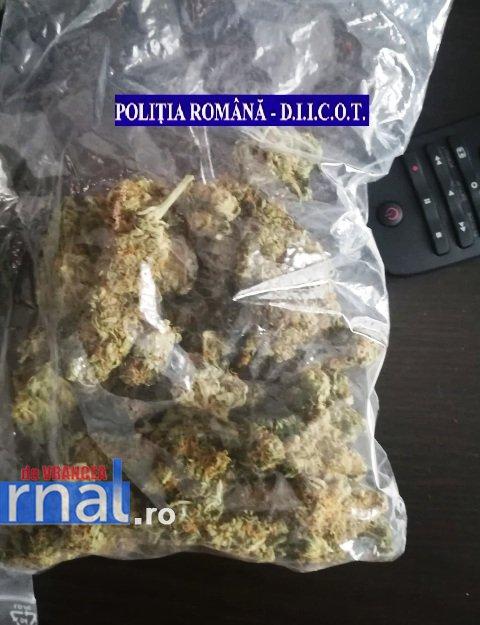 droguri bani 4 - Percheziții la traficanți și consumatori de droguri