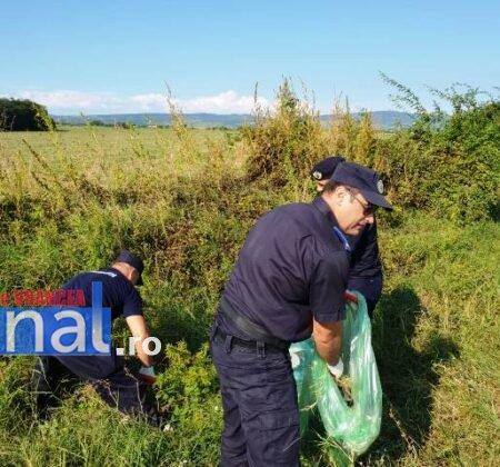 """jandarmeria vrancea let s do it romania 6 450x420 - FOTO: Jandarmii vrânceni au participat la campania de ecologizare """"Let`s Do It România"""""""