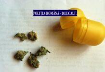 droguri-1