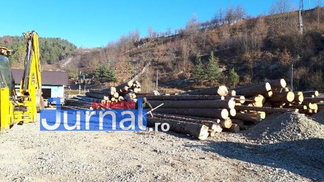 perchezitii lemn4 - FOTO: Percheziții la tăietorii de lemne din Vrancea