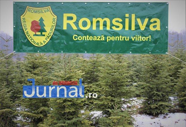 FOTO_ROMSILVA_POMI_CRACIUN