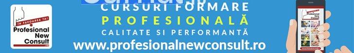 banner 728x110 profesional new consult - Jurnal de Vrancea