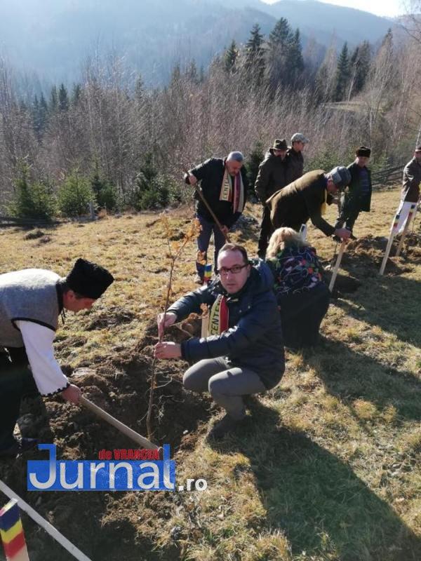 unire plantare5 - FOTO - VIDEO: O sută de stejari plantați de liberalii vrânceni și ardeleni pentru Marea Unire