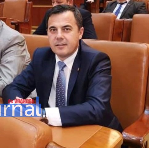 deputat ion stefan in parlament