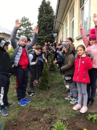 elevi adjud plantare arbusti magnolii4 315x420 - FOTO: Elevii unei școli din Adjud au plantat arbuști de tuia și magnolii