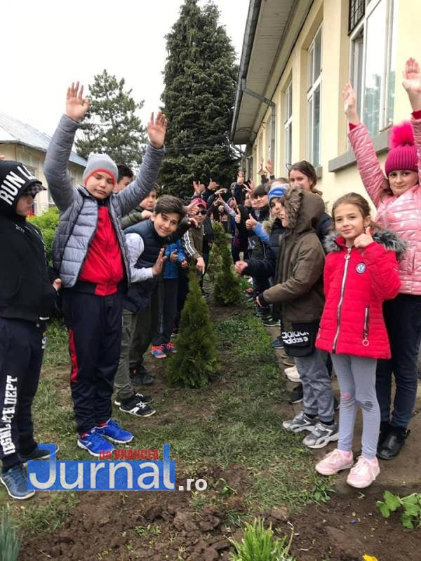 elevi-adjud-plantare-arbusti-magnolii4