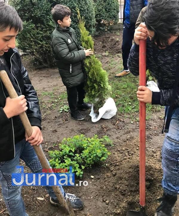elevi adjud plantare arbusti magnolii6 - FOTO: Elevii unei școli din Adjud au plantat arbuști de tuia și magnolii