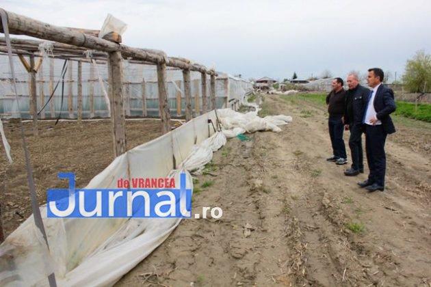 solariu 8 630x420 - FOTO-Ion Ștefan: Prefectura și Direcția Agricolă Vrancea să urgenteze demersurile pentru acordarea despăgubirilor către legumicultorii din Țifești, afectați de fenomene meteo extreme