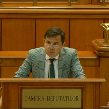 stefan-ion-la-parlament