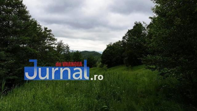 impuscat la vanatoare - UPDATE-ULTIMĂ ORĂ: Braconier împușcat mortal într-un fond de vânătoare din Vrancea