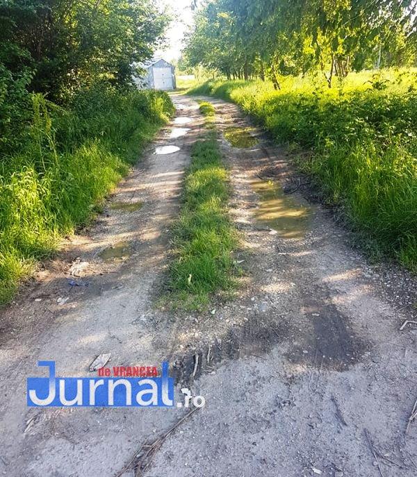 strada longinescu focsani - Alina Drumea, consilier local PNL: Ne dorim panouri fonoizolante în zona Gării