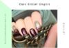 Curs Stilist Protezist de Unghii 4 100x70 - Jurnal de Vrancea