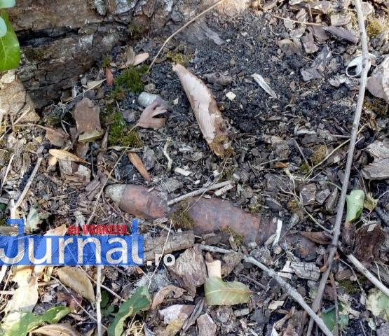 bombe1 - FOTO: Șase proiectile descoperite în pădure, la Sihlea