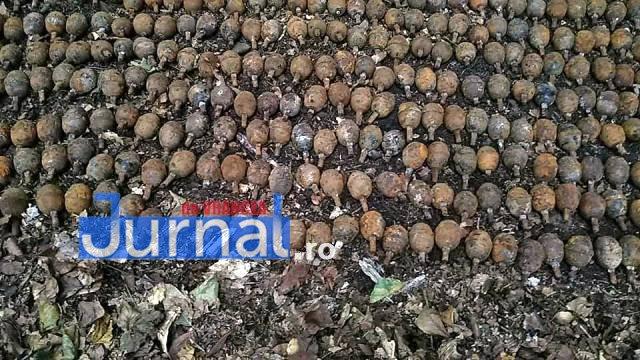 grenade cimpuri1 - FOTO: Descoperire-șoc la Cîmpuri: peste o mie de grenade, scoase din pământ!