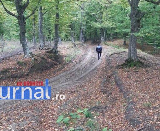 cautari cioban3 513x420 - FOTO-ACUM: Mobilizare pe Valea Râmnicului pentru căutarea a doi ciobani dispăruți de la o stână