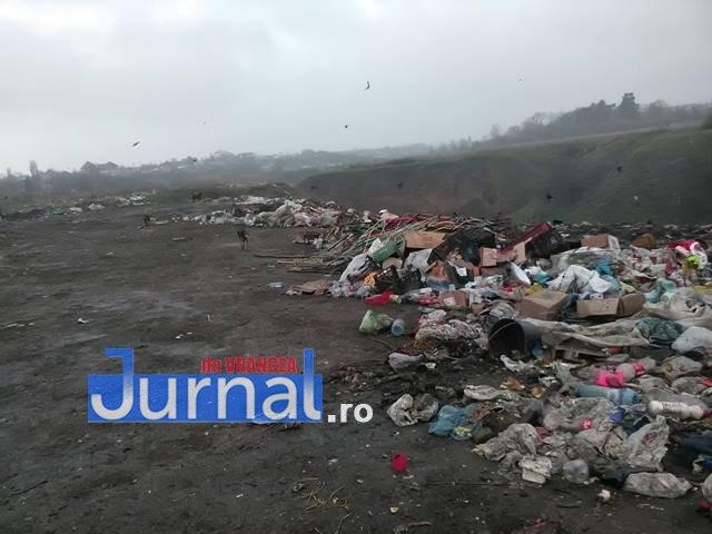 gunoaie slobozia bradului 1 - FOTO: Amendă de 100.000 de lei pentru gunoaiele de la Slobozia Bradului