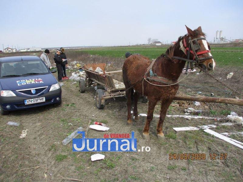 gunoi caruta politia locala 1 - FOTO: Au descărcat gunoiul în mijlocul câmpului! Polițiștii locali i-au amendat cu câte 2.000 de lei