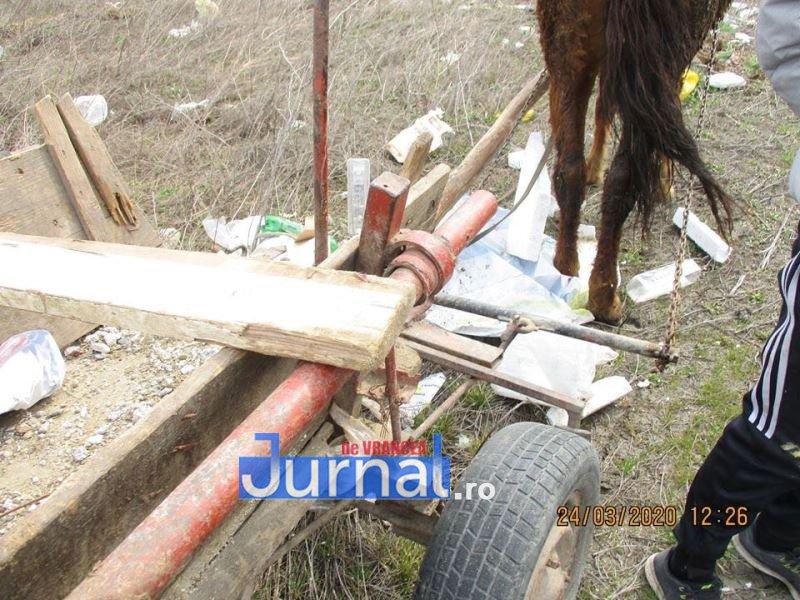 gunoi caruta politia locala 2 - FOTO: Au descărcat gunoiul în mijlocul câmpului! Polițiștii locali i-au amendat cu câte 2.000 de lei