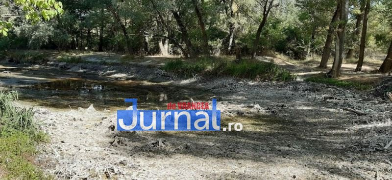 balta biliesti 3 - FOTO: Garda de Mediu a deslușit misterul secării gârlei Sirețel de la Biliești