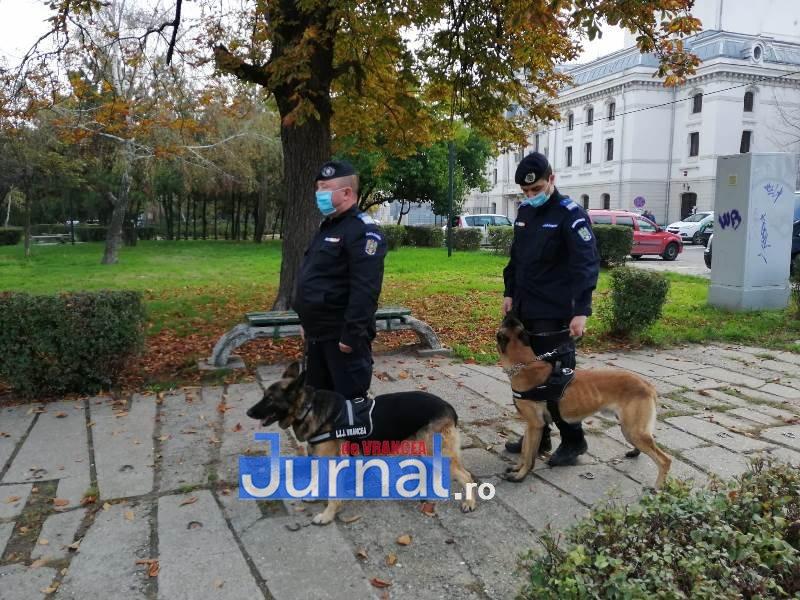 caini jandarmi 3 - GALERIE FOTO: Athos și Bella, ajutoarele de nădejde ale jandarmilor vrânceni. Partenerii necuvântători au participat la 30 de misiuni de la începutul anului